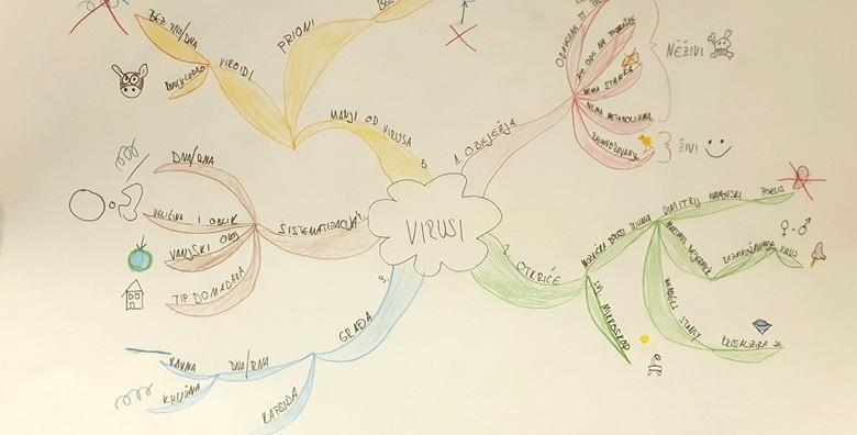 Mentalne mape – tečaj brzog čitanja i ubrzanog učenja - slika 4