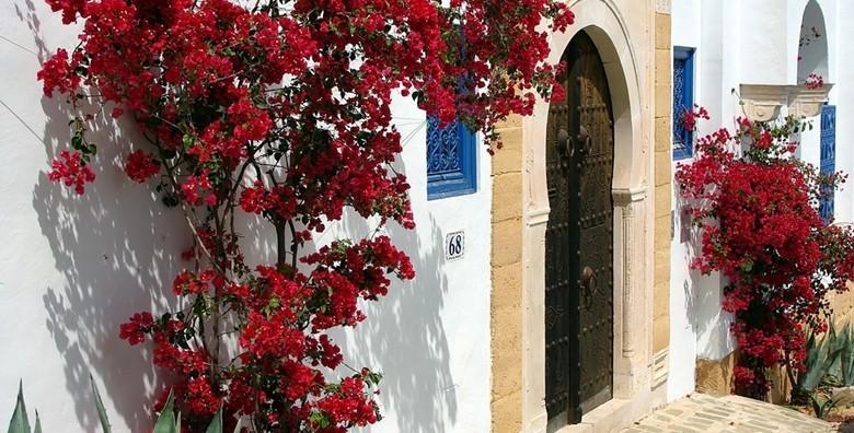 Tunis, Hammamet**** 8 dana all inclusive i let - slika 13