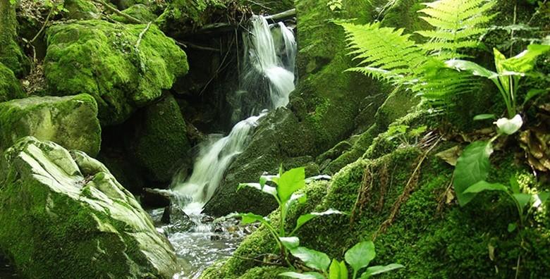 Park prirode Papuk - izlet s ulaznicom i prijevozom - slika 19