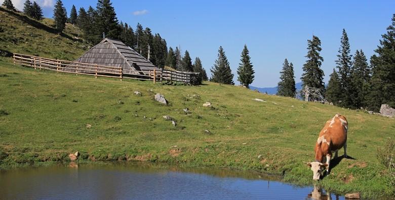Velika planina, Slovenija - izlet s prijevozom - slika 4