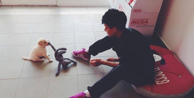 Tečaj njege pasa u trajanju 30 punih sati - slika 2