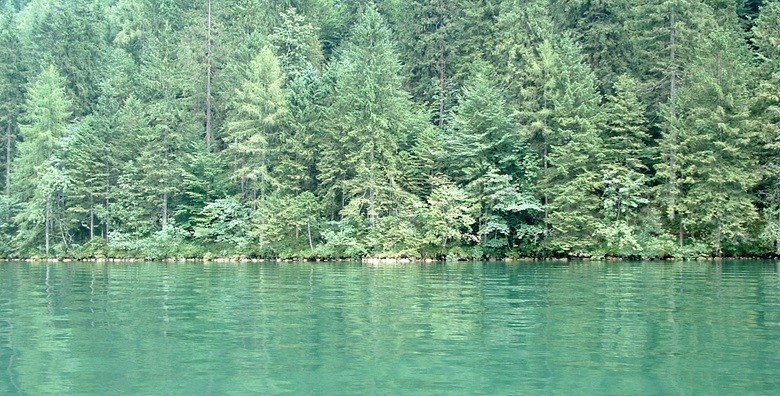 Orlovo gnijezdo i Kraljevsko jezero - izlet s prijevozom - slika 5