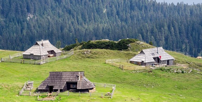 [VELIKA PLANINA, SLOVENIJA] Otkrijte život pastira na planini u okrilju Kamniško - Savinjskih Alpi i kušajte ljubavni sir trnič za 145 kn!