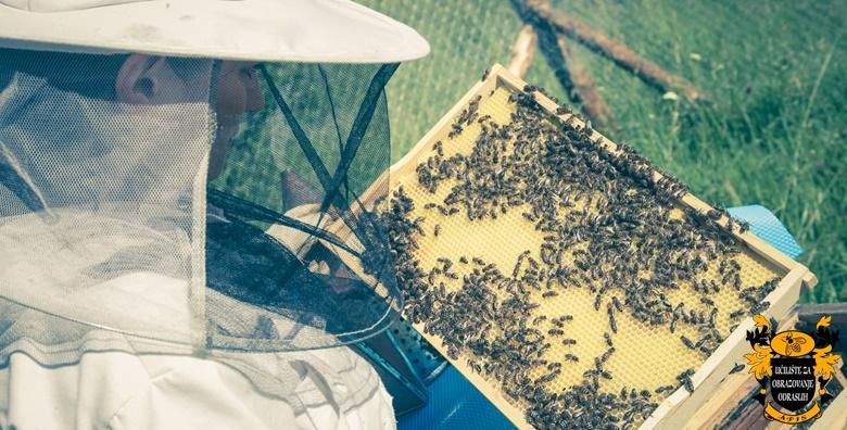 Osposobljavanje za pčelara, upis u e-radnu knjižicu