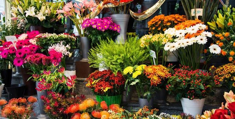 [SAJAM CVIJEĆA] Posjetite gradić Pordenone i uživajte u cvijeću i biljnim dekoracijama koje će predstaviti više od 200 izlagača za 199 kn!