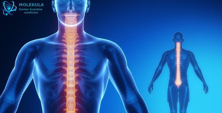 Otkrijte uzrok zdravstvenih problema! NLS kvantna analiza koja definira funkcije organa i daje kompletnu sliku rada cijelog organizma za 1.320 kn!
