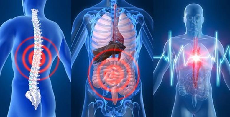 [ANALIZA ORGANIZMA] Potpuni uvid u stanje za samo 60 minuta! Biorezonantna NLS analiza sa 75 parametara uz homeopatsko savjetovanje za 349 kn!