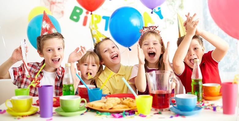 Rent a party - proslava rođendana u vašem domu za 15 djece