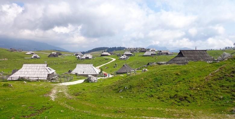 Velika planina i Kamniške Alpe - izlet s prijevozom