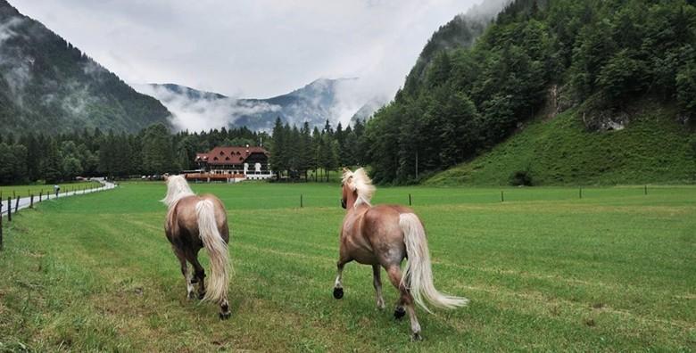 Logarska dolina i Mozirje - izlet s prijevozom
