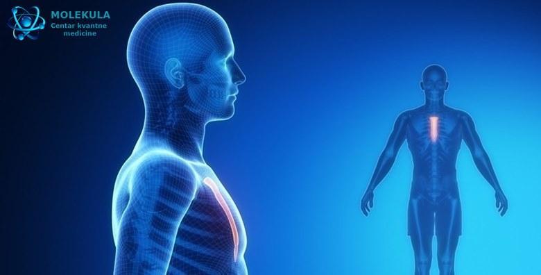[DETALJNA NLS ANALIZA] Pregledom svih organa i sustava pronalazi se uzrok bolesti te daje široka preporuka za oporavak organizma za 2.400 kn!
