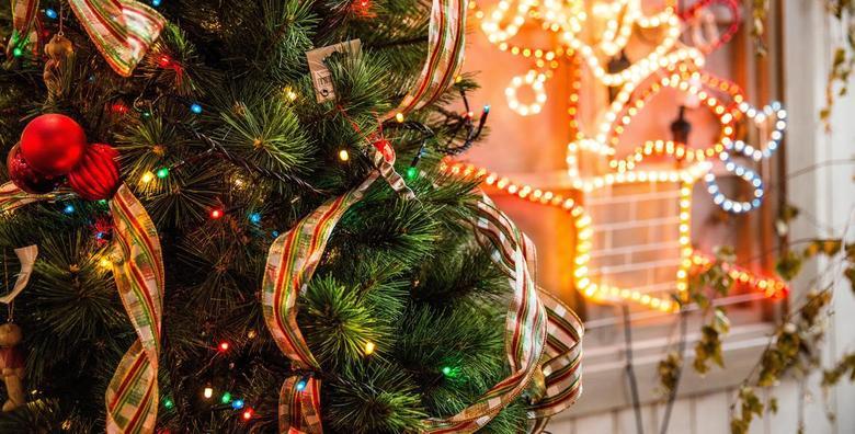 [BOŽIĆNO DRVCE] Pančićeva omorika visine 1,2 do 3 metra - pripremite ukrase, okupite obitelj i unesite blagdansku čaroliju u svoj dom već od 65 kn!