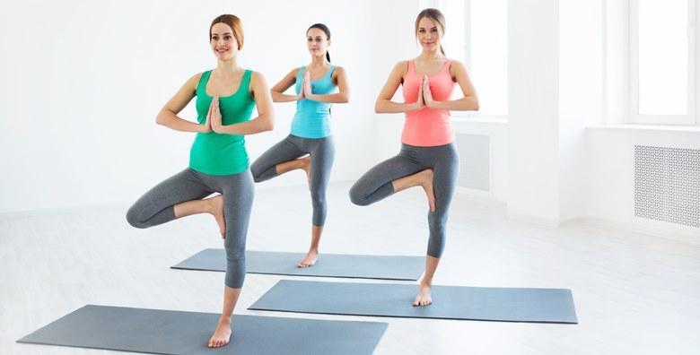 Dinamička yoga - mjesec dana treninga, 2 puta tjedno za samo 99 kn!