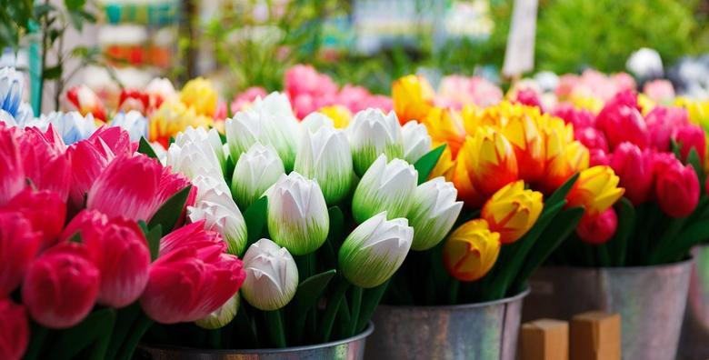 Conegliano i sajam cvijeća u Pordenoneu - izlet s prijevozom za 220 kn!