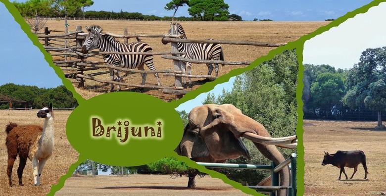 NP Brijuni i Pula - jednodnevni izlet s uključenim prijevozom za 225 kn!