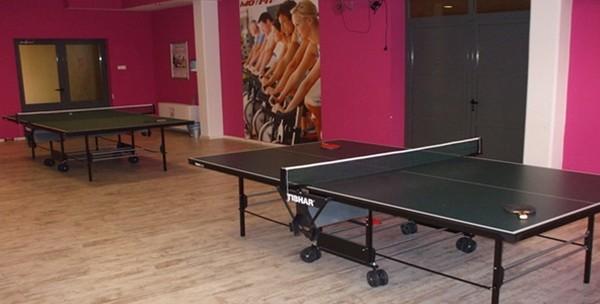 Stolni tenis -  10 sati najma terena, stola i rekvizita - slika 2